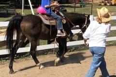 Colorado Horse Power 6